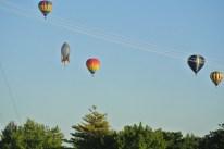 Saturday Balloon Launch 16