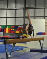 Judges' Cup 2013 Beam Back Walkover - Level 7