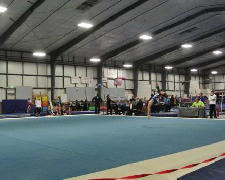 Judges' Cup 2013 Floor Back Layout - Level 7