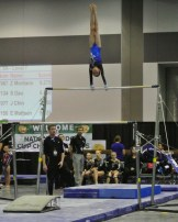 National Judges' Cup 2014 Bars Giant - Level 7