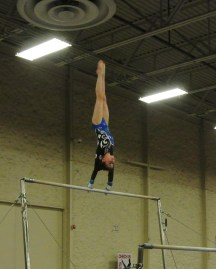 Queen of Hearts Invitational 2014 Bars Giant - Level 7