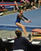 Idaho State Championships 2014 Vault 2 Board - Level 7