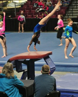 Idaho State Championships 2014 Vault 2 Handstand - Level 7