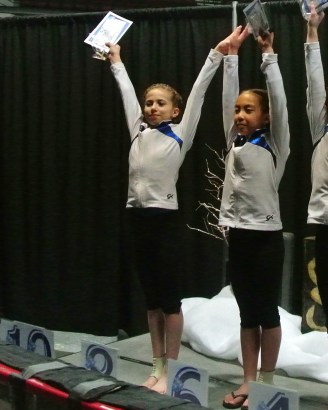 Gem State Invitational 2015 All-Around Awards - Eighth - Level 7