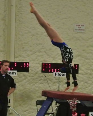 Queen of Hearts Invitational 2015 Vault Handstand - Level 7