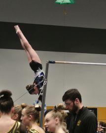 Charity Choice Invitational 2016 Bars Pirouette - Level 8