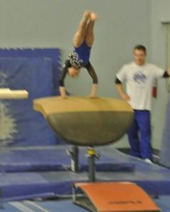 Teddy Bear Classic 2011 Vault Handstand 2 - Level 5