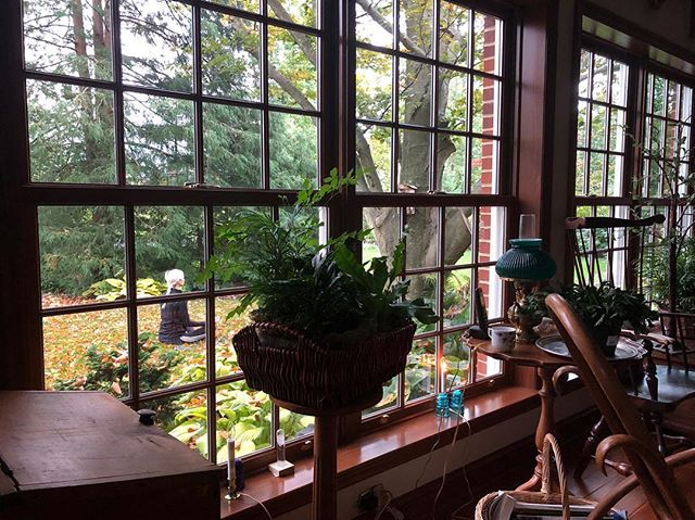 The view from my parent's and before that my grandparent's home in State College, PA where we visited a week or so ago. It was peak fall vibes, visuals, and temperature and the backyard is the perfect place to sit in meditation. @williedictionary caught this zen moment in my favorite house in one of my favorite towns