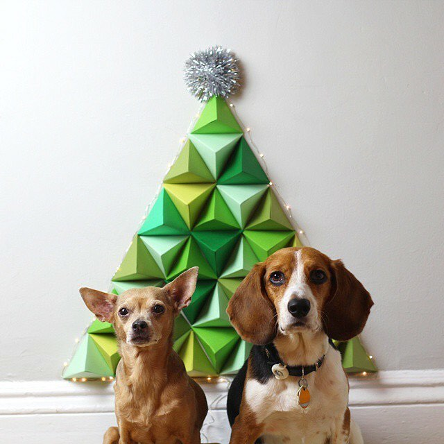 to my DIY 3D Geometric Christmas tree but mostly MY DOGS ❤️🎄❤️ video on @hgtvhandmade from Christmas 2014