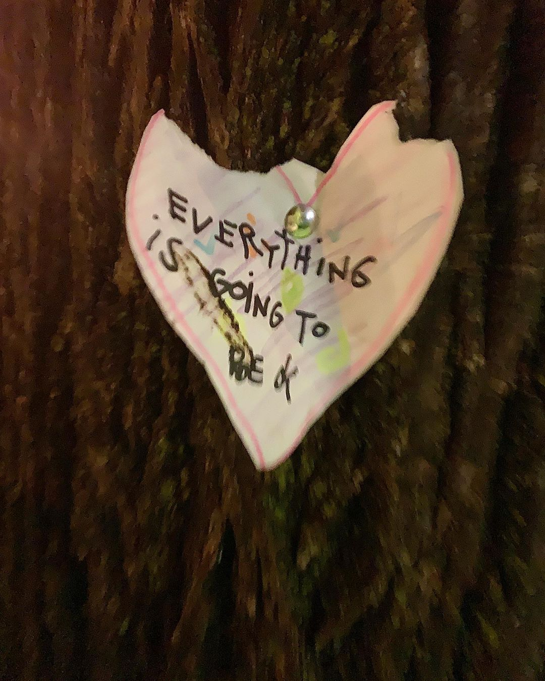 We walked our dogs safely away from everyone yet still connected to humanity by these homemade messages on the trees in our neighborhood. ❤️