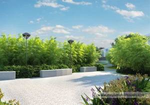 idesia-house-and-lot-for-sale-in-idesia-dasmarinas-cavite-amenities-bamboo-grove