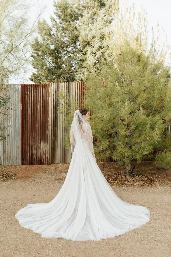 Megan Claire Photography | Arizona Wedding Photographer.  Rustic Glam Backyard Wedding. Bride and Groom Portraits