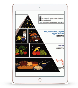 food pyramid preview