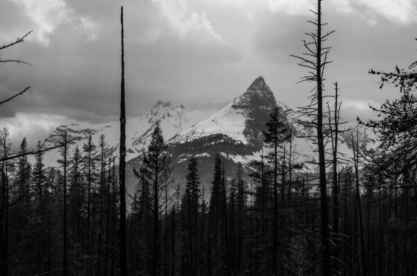 Rocky Mountains in May