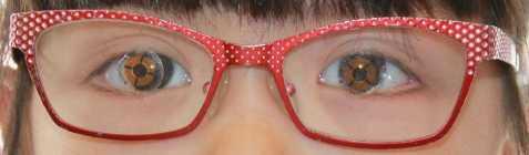新しいメガネができるまで暫定的に調整し直したが中心は合っていない