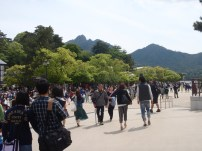 On our way to the shrine gate