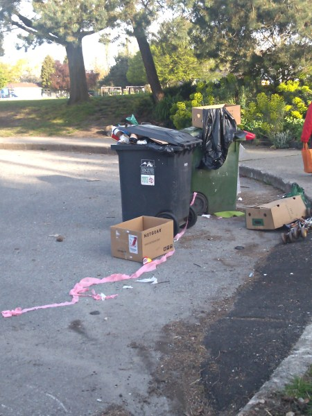 Garbage day in the hood which also means garbage dumping day to some jerks.
