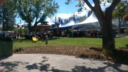 Music festival in Princeton.