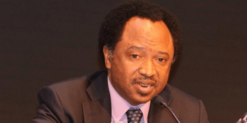 BREAKING: Shehu Sani resigns from APC in protest