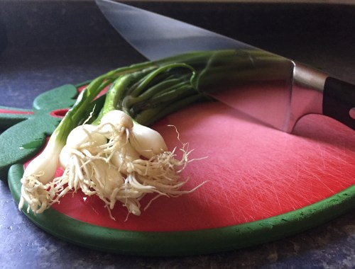 image shows the easiest way to store green onions by megan kerry