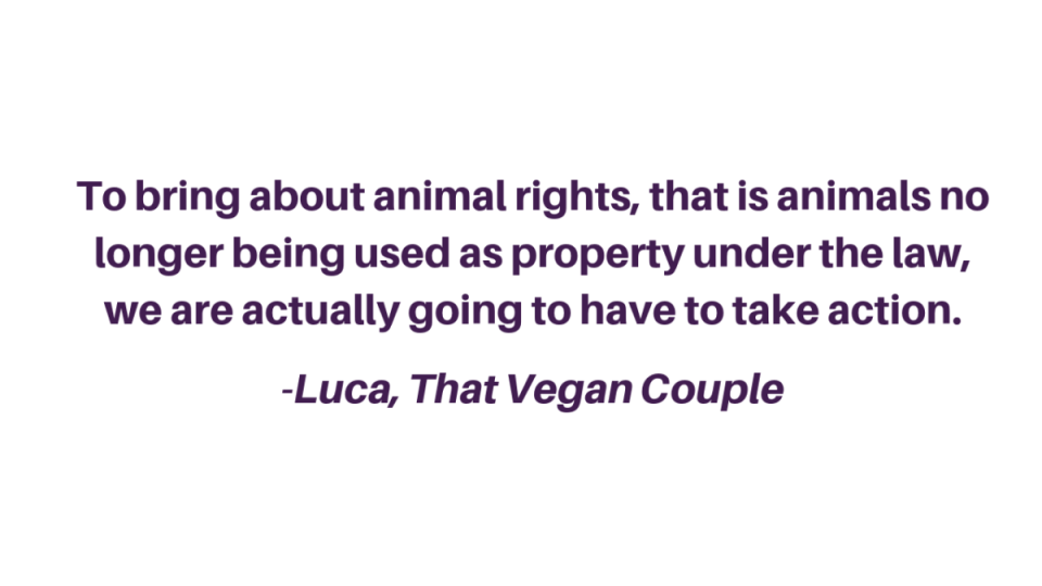 To bring about animal rights, that is animals no longer being used as property under the law, we are actually going to have to take action. _Luca, That Vegan Couple