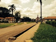 Took a walk around the poorly-signed Accra Legon University. It was pretty!