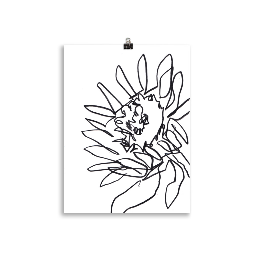 abstract line art of a sunflower by megan st clair