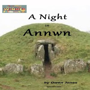 A Night in Annwn - a book or story?
