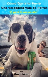 Cómo Dar a tu Perro una Verdadera Vida de Perros