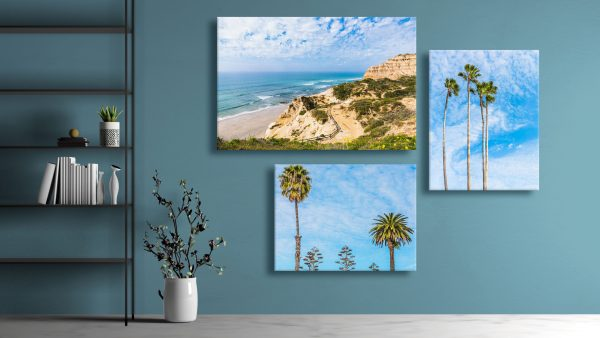 A grouping of three canvas prints on a wall.