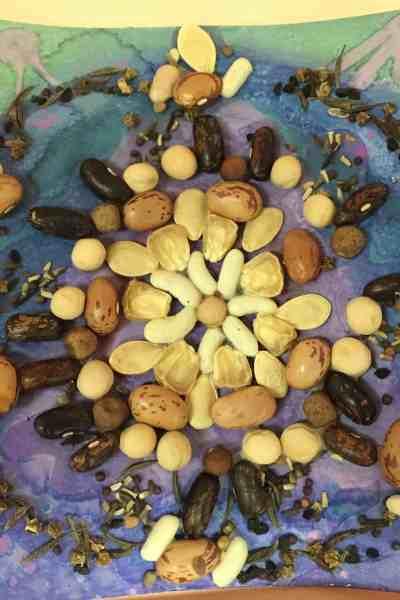 seed mandala