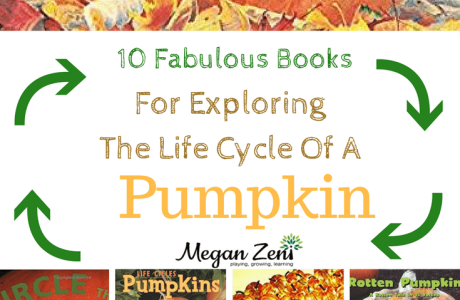 10 Pumpkin Life Cycle Books