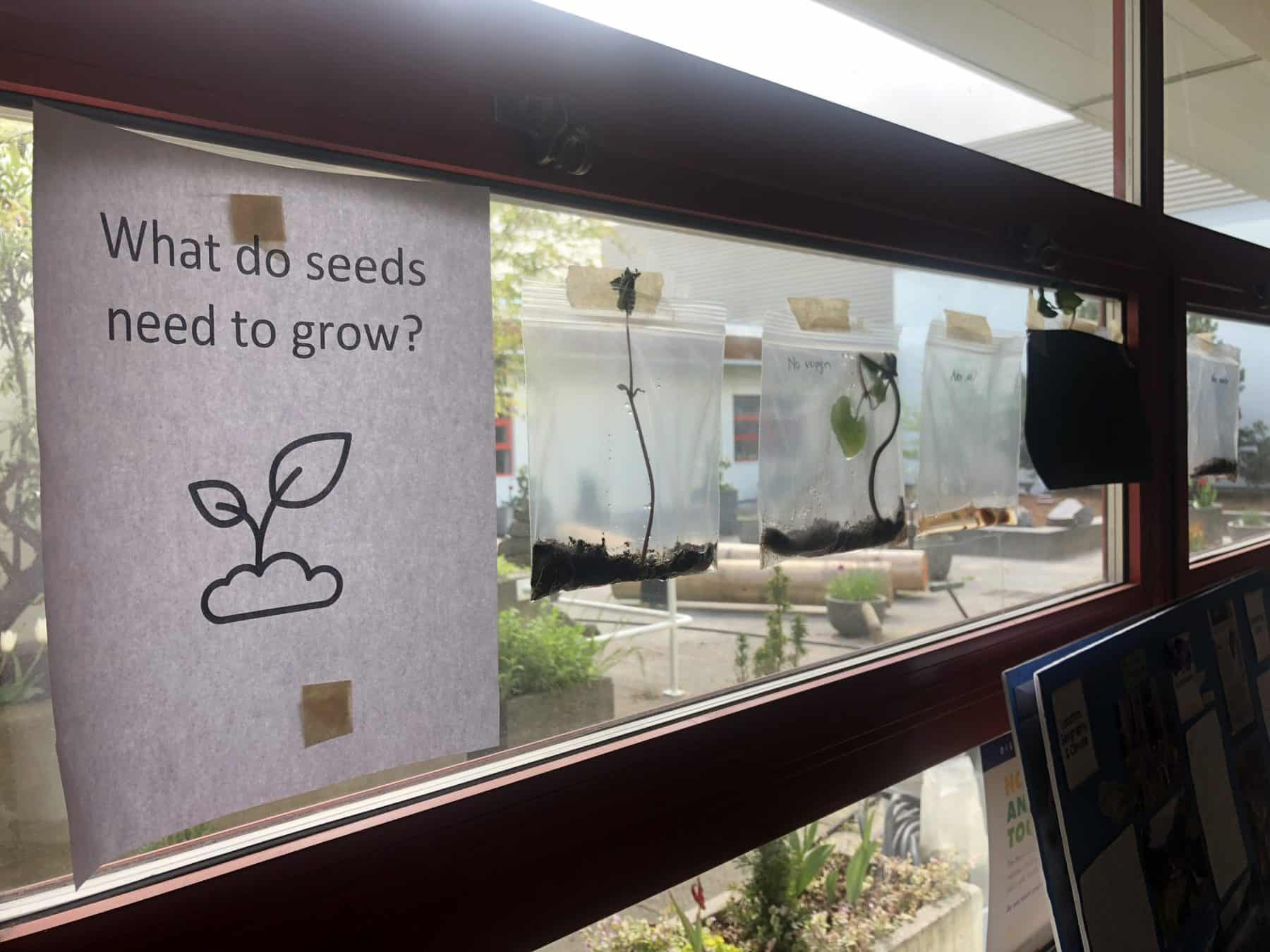 seed inquiry