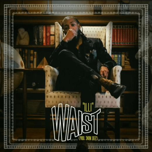 Waist Cover Art