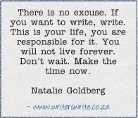 There is no excuse. If you want to write, write. This is your life, you are responsible for it. You will not live forever. Don't wait. Make the time now. Natalie Goldberg {Megaphone Society}