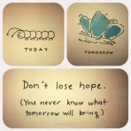 Don't lose hope. {Megaphone Society} #amwriting #inspiration