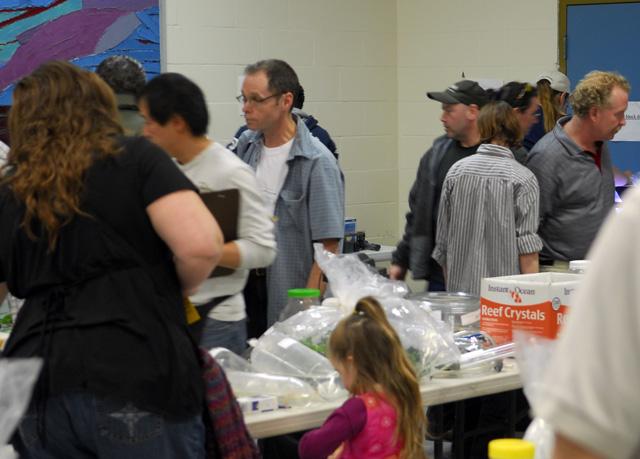 Ottawa Valley Aquarium Society - Annual GIANT Auction - 2010