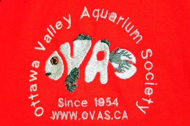 DSC_8871-OVAS-t-shirt
