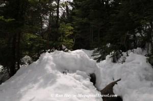 RON_3324-snowy-trail