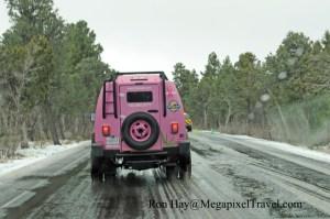 DSC_8134-pink-jeep-tours