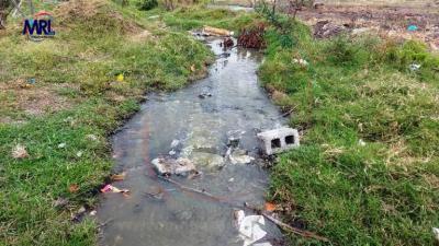 Descarada contaminación de Comapa Altamira a Laguna de Champayan