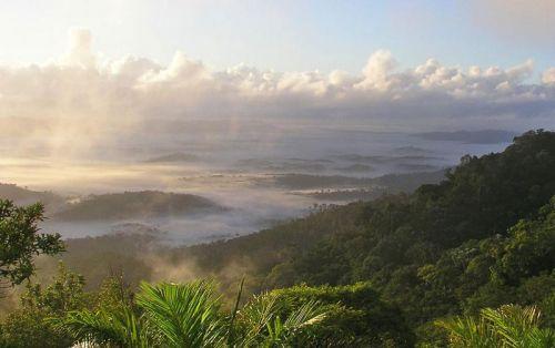 Природа Южной Америки