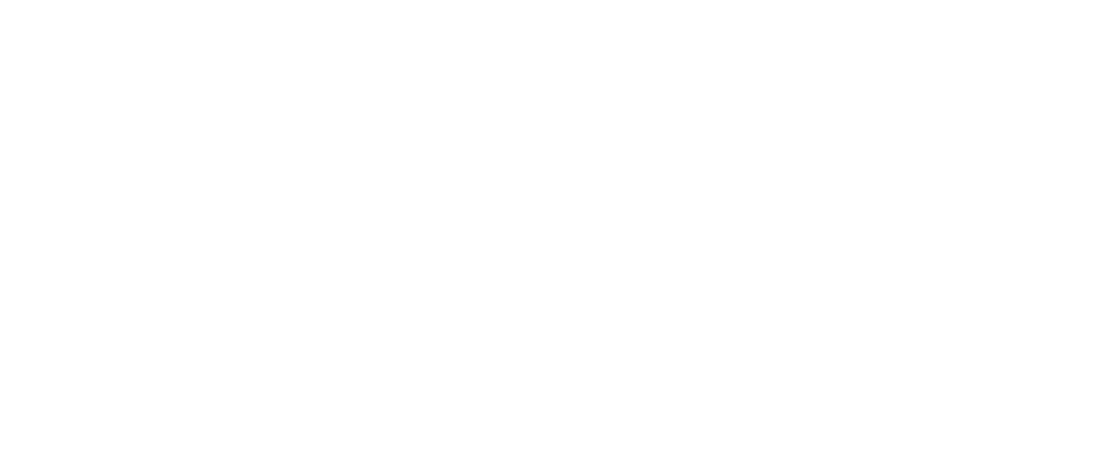 newport-transparent.png