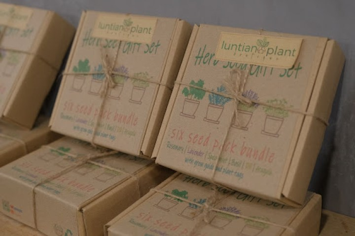 Kickstart your gardening with starter kits from Luntian Plant Boutique (G/F).