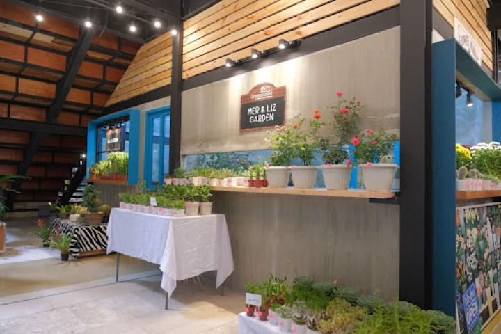 You can buy your first succulent at Mer & Liz Garden (G/F) and La Floreria (G/F)