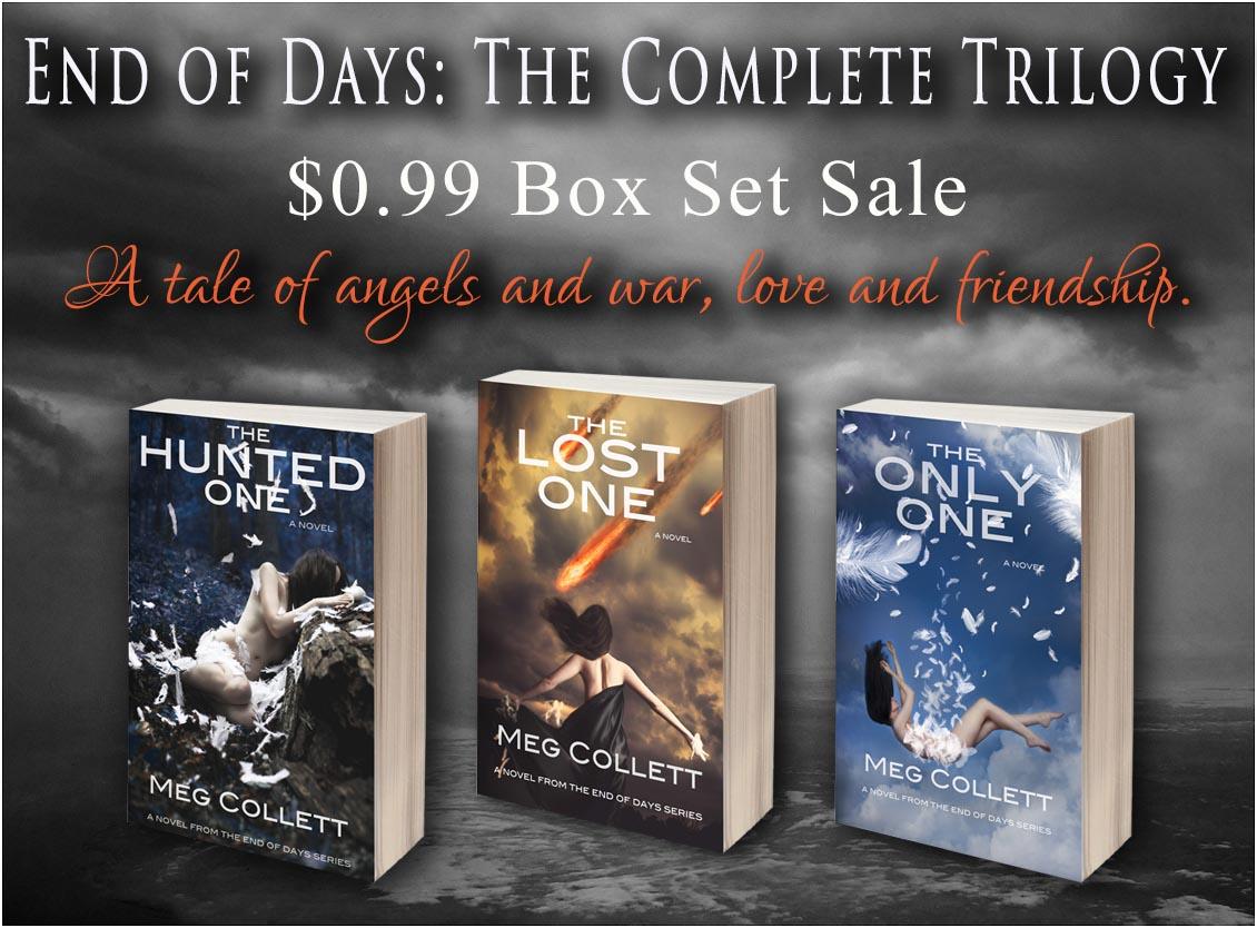 sale image for box set sale