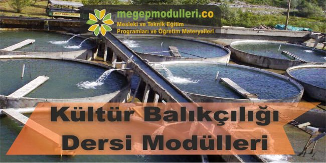 kultur balikciligi dersi modulleri