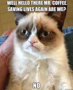 I've discovered there is a Grumpy Cat photo for every occasion.