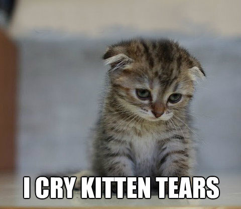 Okay, this kitten is sadder than me. No one can be as sad as this kitten. Plus, I was kind of mad at the same time, not just sad.