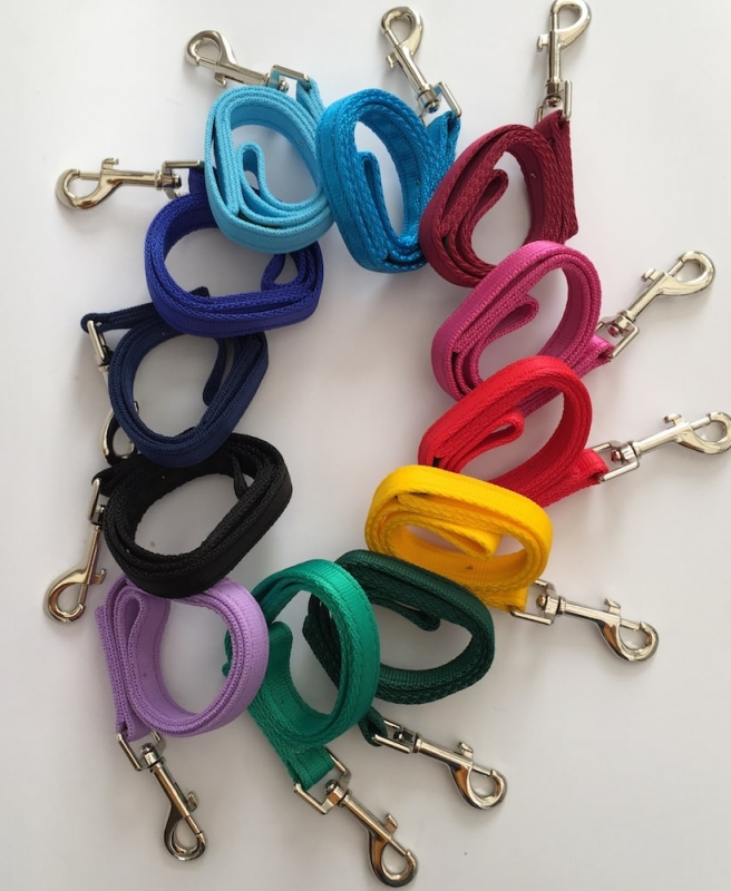 Dog Lead - examples of some colours